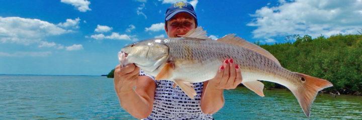 2017 MEMORIAL WEEK FISHING IN SW FLORIDA