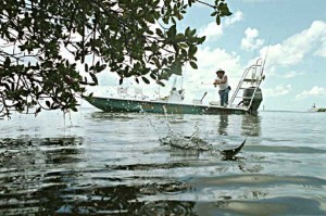 Charlotte County Fishing Report With Frank June 29 2012