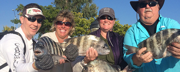 "Captain Terry says ""Fishing for the Sheepshead should be good anytime during moving water"""
