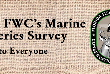 Take FWC's Marine Fisheries Survey & Workshops