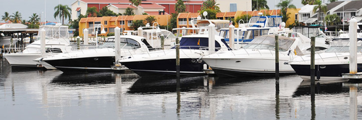 Cape Coral Cruise Club Enjoys a fun time at Naples Boat Club.