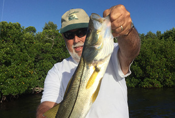 """Captain Terry says """"Redfish will continue to inhabit the flats and backcountry so long as the warm weather holds."""""""