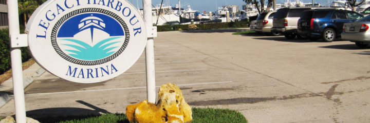 Cruise Club returns to Legacy Harbour