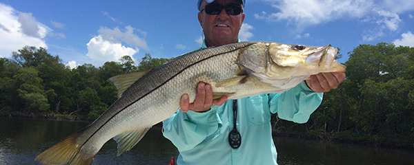 """The Redfish 'bite' has been good on large shrimps"" says Captain Terry"