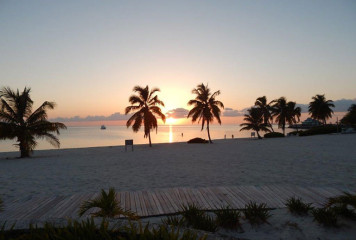 """LIFESTYLES OF THE """"NOT SO"""" RICH AND FAMOUS – Cape Coral Cruise Club"""