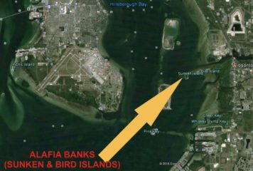 FWC Proposed CWA's in Southwest Florida Could Impact Boating