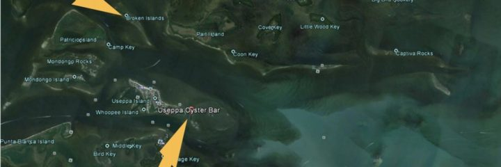 Proposal for Critical Wildlife Areas In Pine Island Sound