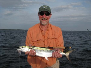 john mackerel 4 x 6