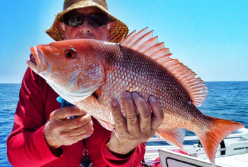 Rep. Jolly introduces bill that could lead to a longer Red Snapper fishing season